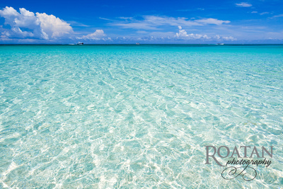 Roatan Photography: Sights of Roatan &emdash; Crystal Clear -West Bay Beach